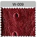 W-009
